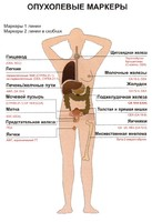 Простатический специфический антиген (ПСА) свободный
