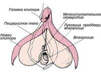 Клиторопластика - увеличение объема головки и кармана клитора